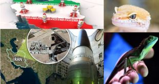 That time U.S. used lizards to spy on Iran nuclear facilities