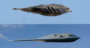 B-2 Spirit Bomber: The Most Feared Aircraft in the Sky - How Stealth Bombers Work.