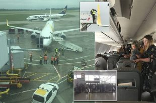 Ryanair plane crashed into Primer on runway at Stansted Airport