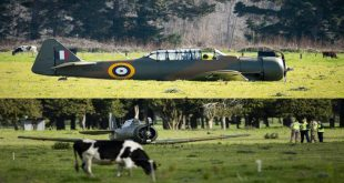 New Zealand Air Force Vintage plane crash lands near Ōhakea Air Force base