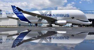 "Watch: First flight of Airbus' BelugaXL "" flying whale"""