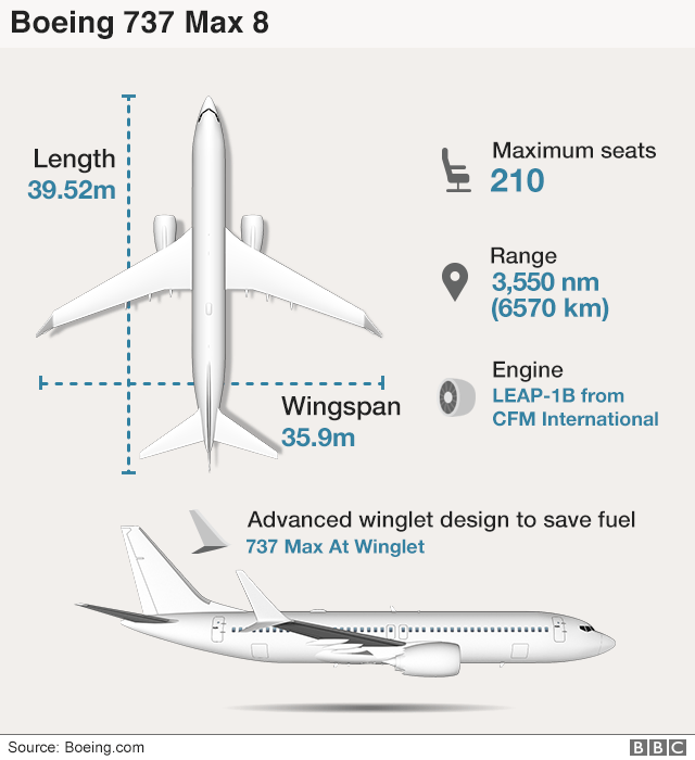 What is a Boeing 737 Max aircraft?
