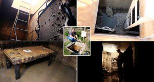 Men Found hidden WWII bunker under the back garden of his new house