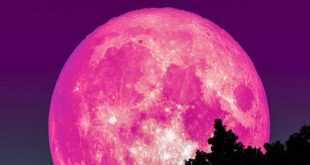 'Stunning' Pink Moon is set to rise over earth on Good Friday