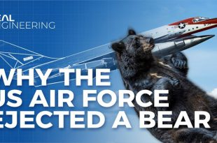 When US Air force ejected drugged BEARS from world's first supersonic jet bomber
