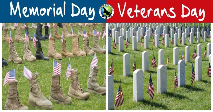 Do you know the Difference Between Veterans Day And Memorial Day?