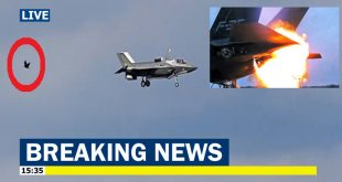 USMC F-35B Sustained more than $2 million In damage from a Bird Strike during takeoff