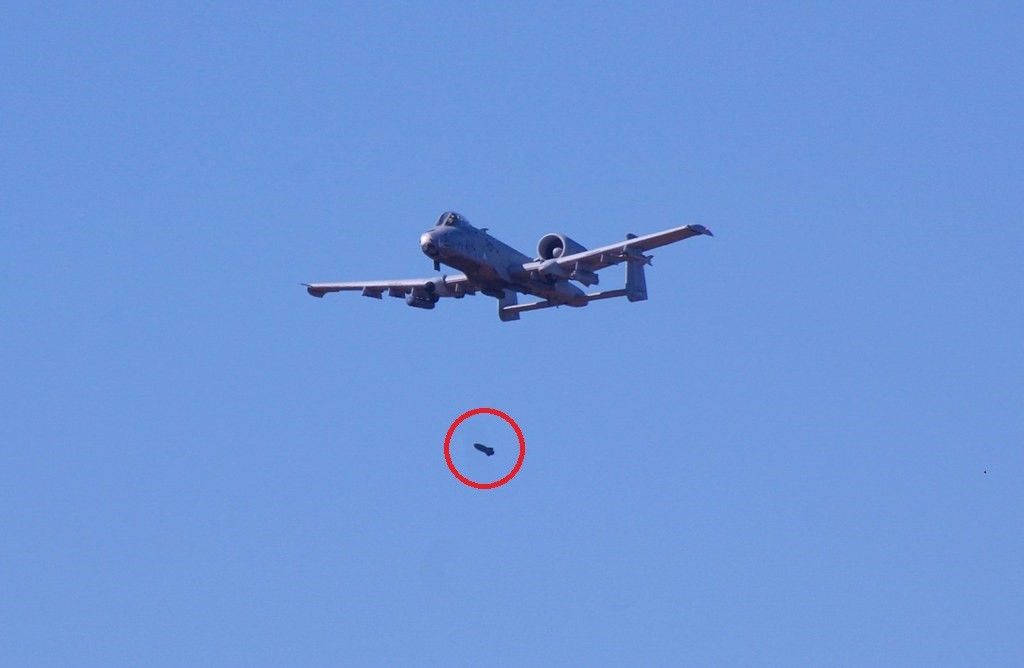 U.S. Air Force A-10 Warthog accidentally dropped bombs on Florida after after 'bird strike'